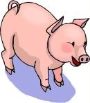 clip-art-pigs-241167