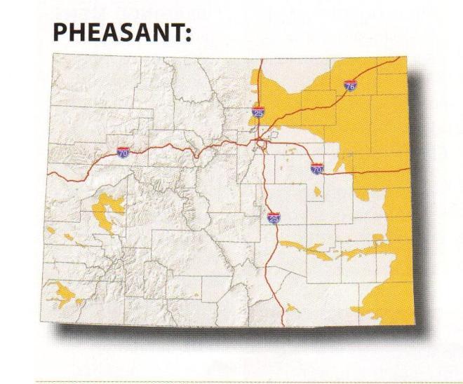 Pheasant map